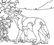 coloriage coyote stylis dessin gratuit imprimer. Black Bedroom Furniture Sets. Home Design Ideas