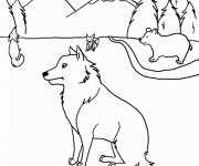 Coloriage Coyotes et Ours