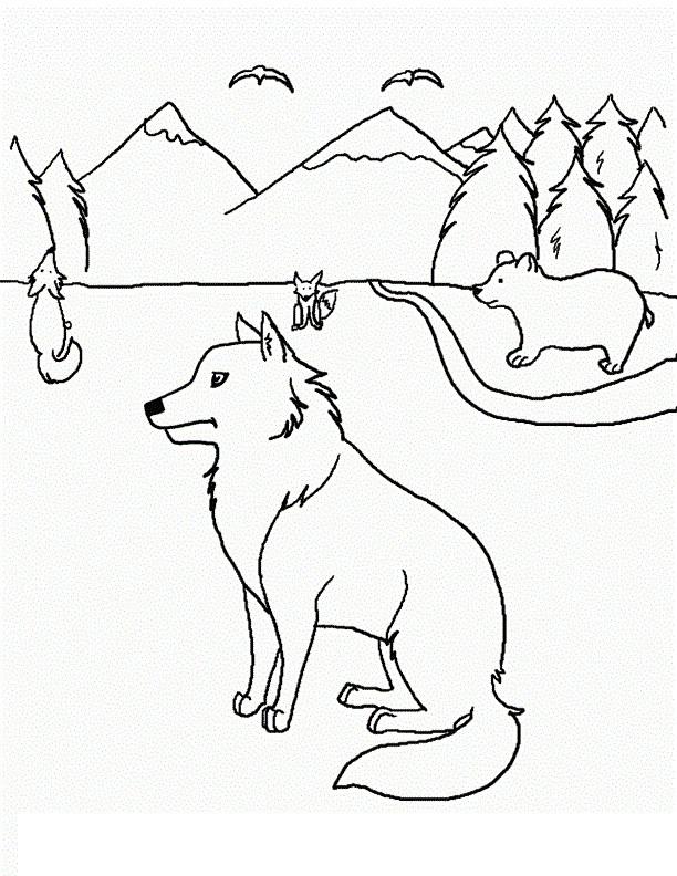 Coloriage et dessins gratuits Coyotes et Ours à imprimer