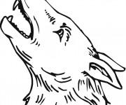Coloriage et dessins gratuit Tête de Coyote à imprimer