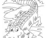 Coloriage Crocodile 17