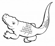 Coloriage dessin  Crocodile 4