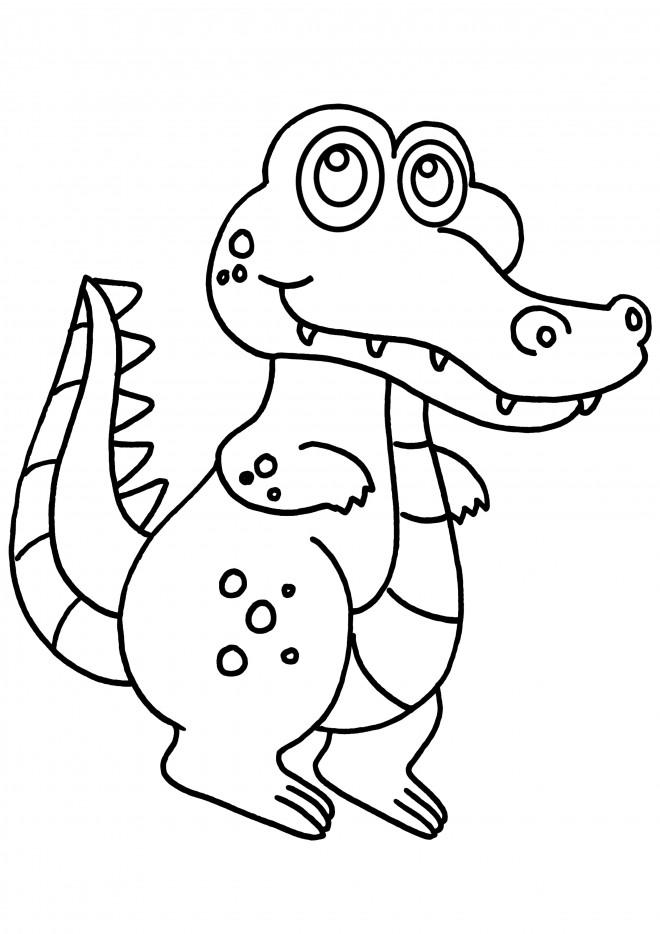 Coloriage crocodile souriant dessin gratuit imprimer - Crocodile en dessin ...