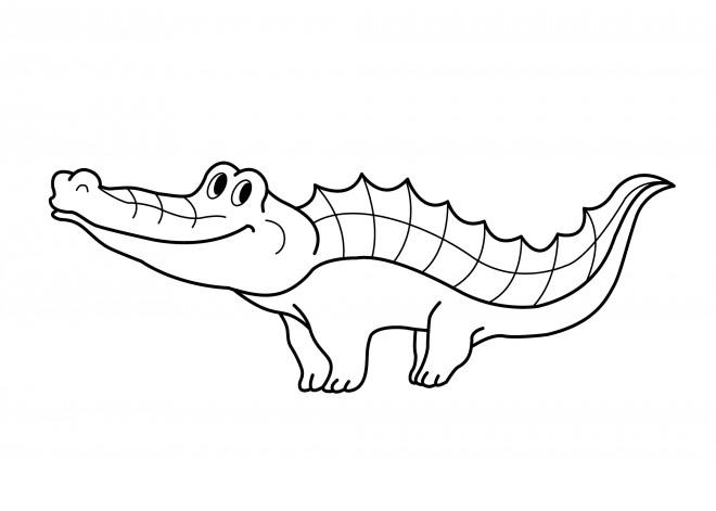 Coloriage et dessins gratuits Petit crocodile en souriant à imprimer