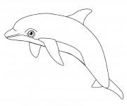 Coloriage dessin  Dauphin 8
