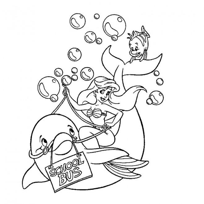 Coloriage dauphin dessin anim dessin gratuit imprimer - Dauphin dessin couleur ...