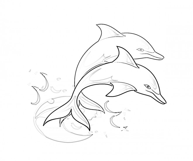 Coloriage Couleur Dauphin.Coloriage Dauphins A Telecharger
