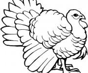Coloriage et dessins gratuit Dinde fantastique à imprimer