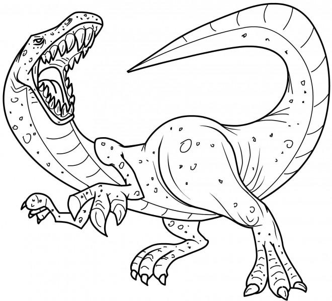 Coloriage et dessins gratuits Dessin de dinosaure Tyrex à imprimer