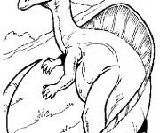Coloriage Dinosaure dessin enfants