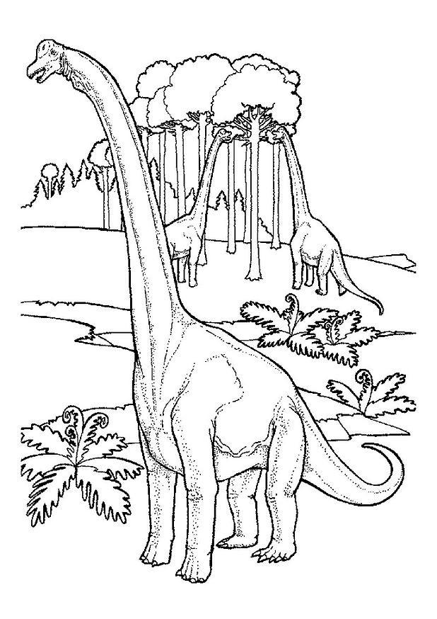 Coloriage et dessins gratuits Dinosaure herbivore à imprimer