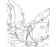 Coloriage Dinosaure Ptéranodon