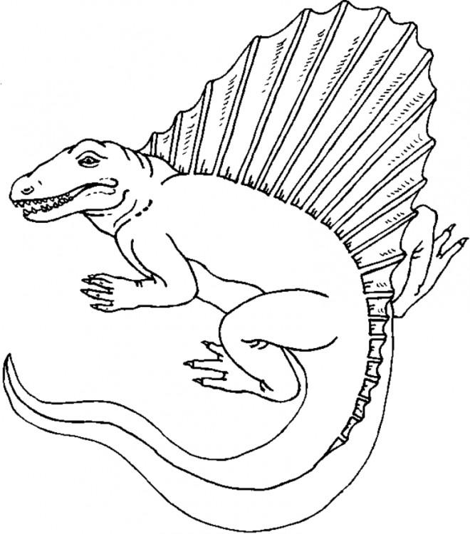 Coloriage Dinosaure Stegosaurus Dessin Dessin Gratuit A Imprimer