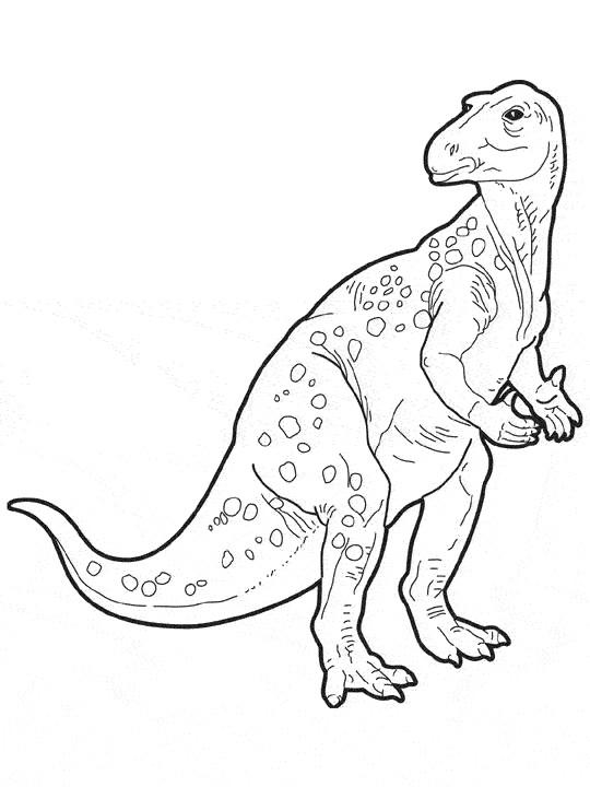 Coloriage Dinosaure Sur Ordinateur.Coloriage Dinosaure Sur Ordinateur Dessin Gratuit A Imprimer