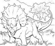 Coloriage Dinosaure tricératops facile