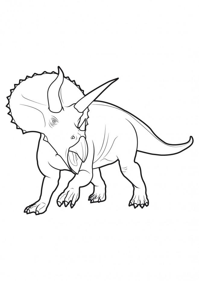 Coloriage Dinosaure Triceratops.Coloriage Dinosaure Triceratops Feroce