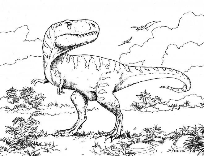 Coloriage dinosaure tyrex au crayon dessin gratuit imprimer - Coloriage de dinosaure a imprimer gratuit ...