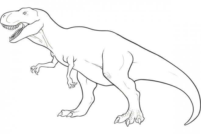 Coloriage Dinosaure Tyrex Couleur Dessin Gratuit à Imprimer