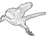 Coloriage Dinosaure volant