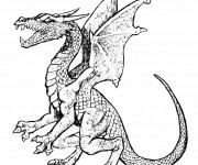 Coloriage Dragon en ligne
