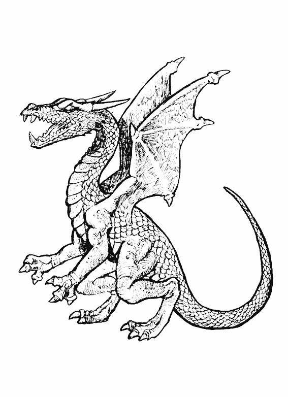Coloriage Dragon En Ligne Dessin Gratuit A Imprimer