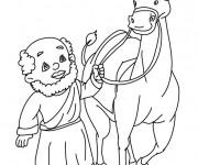 Coloriage dessin  Dromadaire 11