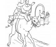 Coloriage et dessins gratuit Dromadaire Animaux à imprimer