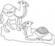 Coloriage et dessins gratuit Le repos des chameaux à imprimer