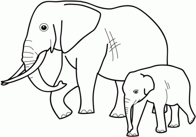Coloriage et dessins gratuits Éléphant avec son bébé à imprimer