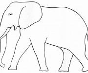 Coloriage dessin  Elephant 10