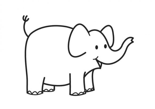 Coloriage et dessins gratuits Elephant 12 à imprimer