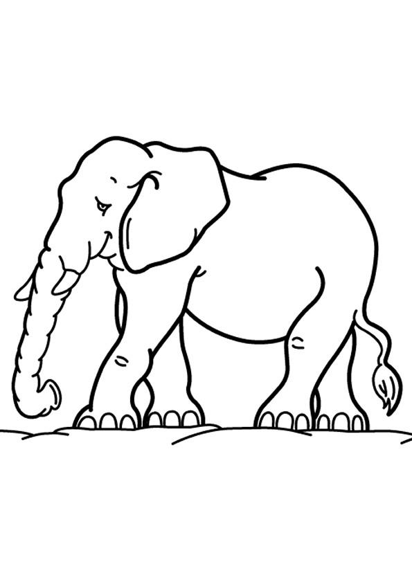 Coloriage et dessins gratuits Elephant 13 à imprimer