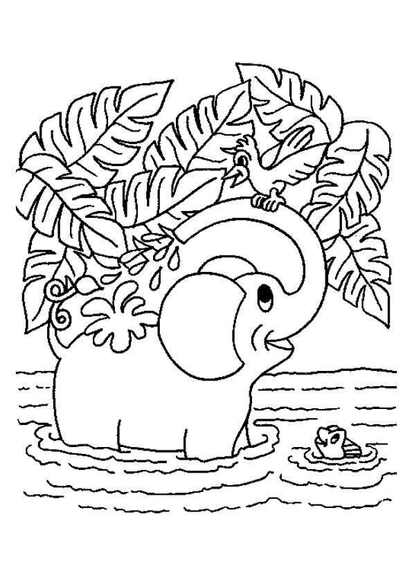 Coloriage et dessins gratuits Elephant 18 à imprimer