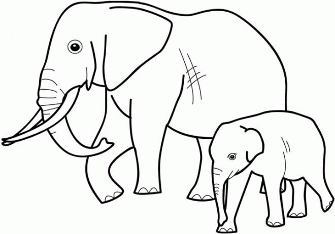 Coloriage et dessins gratuits Elephant 4 à imprimer