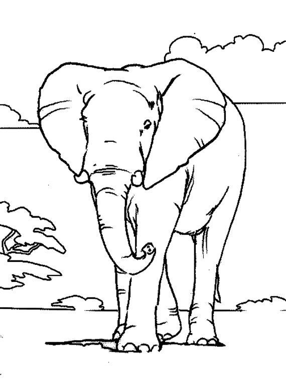 Coloriage et dessins gratuits Elephant 6 à imprimer