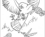 Coloriage et dessins gratuit Faucon en attaquant à imprimer