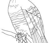 Coloriage et dessins gratuit Faucon en couleur à imprimer