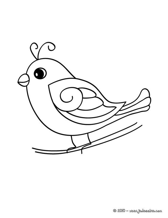 Coloriage et dessins gratuits Faucon mignon à imprimer
