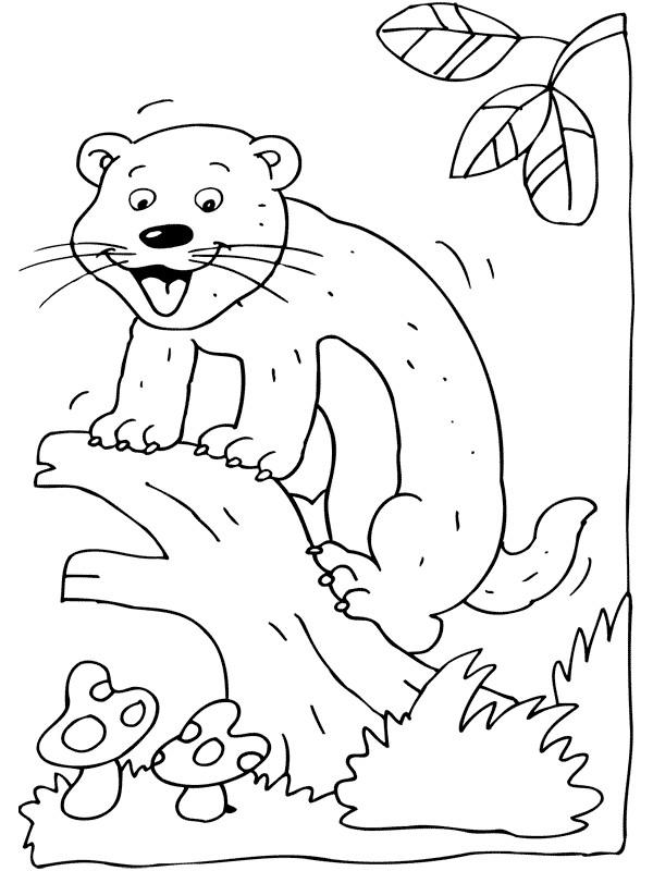 Coloriage et dessins gratuits Furet sur l'arbre à imprimer