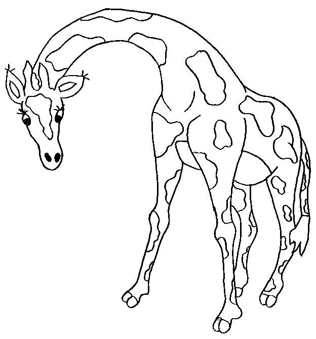Coloriage et dessins gratuits Girafe adulte à imprimer