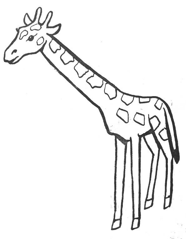 Coloriage et dessins gratuits Girafe couleur à imprimer