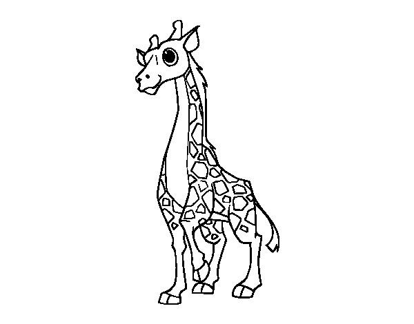 Coloriage et dessins gratuits Girafe dessin animé à imprimer