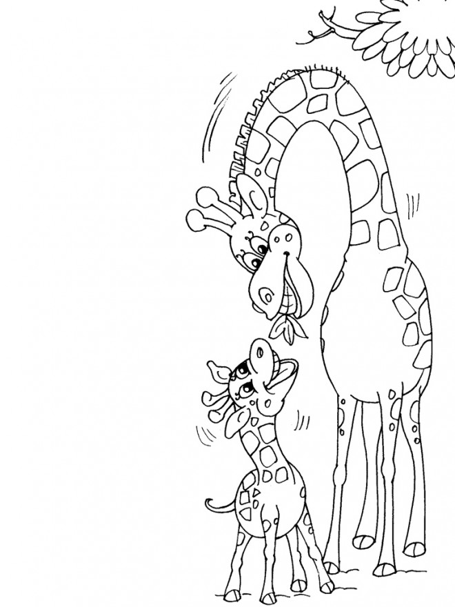 Coloriage et dessins gratuits Girafe donne de la nourriture à son petit à imprimer
