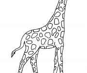 Coloriage Girafe en plein air