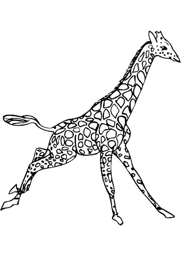 Coloriage et dessins gratuits Girafe en sautant à imprimer