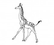 Coloriage Girafe en train de marcher