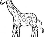 Coloriage et dessins gratuit Girafe et sa la longue cou à imprimer