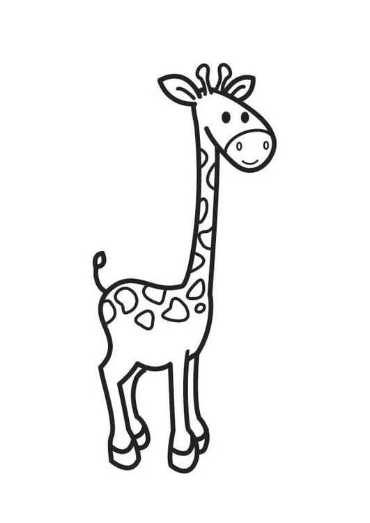 Coloriage et dessins gratuits Girafe facile pour enfant à imprimer