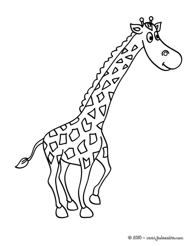 Coloriage girafe pour enfant dessin gratuit imprimer - Girafe a imprimer ...