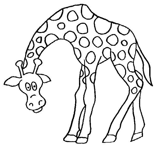 Dessin Girafe Rigolote coloriage girafe rigolote dessin gratuit à imprimer
